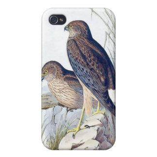 Birds iPhone 4/4S Covers
