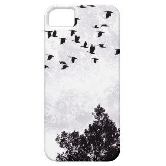 Birds iPhone SE/5/5s Case