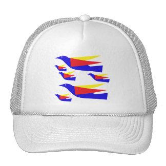 Birds migration hat