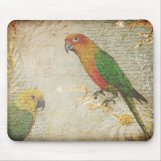 Birds Mouse Pad designer background with Parrots