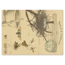 Birds Nest Bee Apothecary Decoupage Tissue Paper