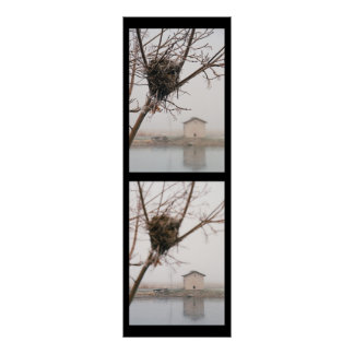 Bird's Nest Diptych Poster