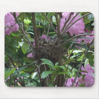 Bird's Nest in Rhododendron Bush Mouse Pad
