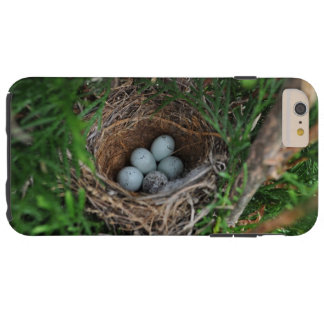 Bird's Nest iPhone 6 Plus Case