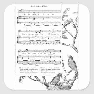 Bird's Nest Song and Music Square Sticker