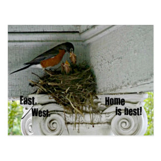 Birds nest with quote about home. postcard
