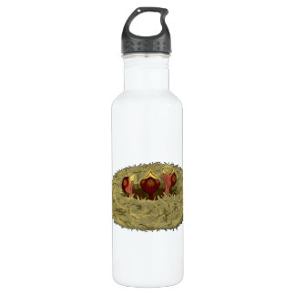 Birds Nest with Three Hungry Chicks Water Bottle