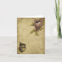 Birds & Nests- Prim Lil Note Cards