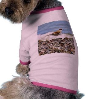 Birds Oceans Beaches Pet Tshirt