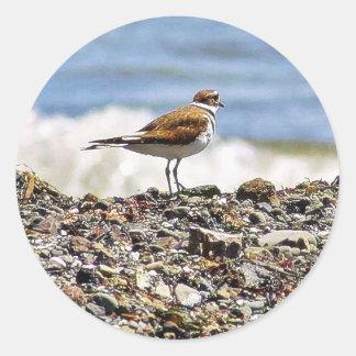 Birds Oceans Beaches Round Sticker