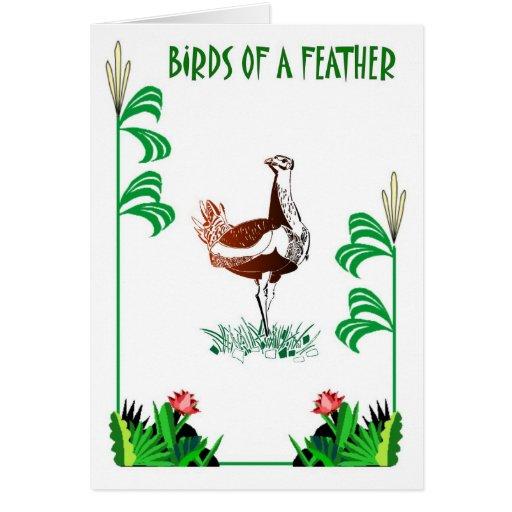 Birds of a Feather 3 Tarjeta