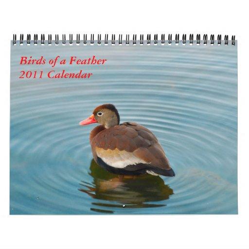 Birds of a Feather Calendar