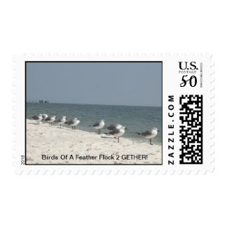 Birds of a feather flock 2gether stamp