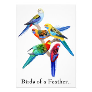 Birds of a Feather Parrots Party Invitation