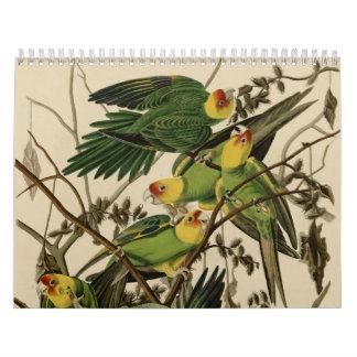 Birds of America Calendar