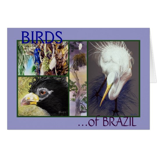 BIRDS of BRAZIL Fine Art Greeting Card