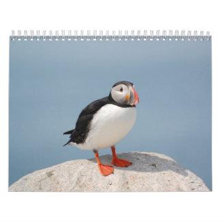Birds of Eastern North America Calendar