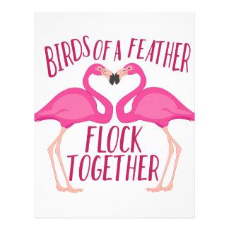 Birds Of Feather Letterhead