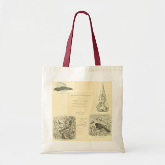 Birds of India Tote Bag