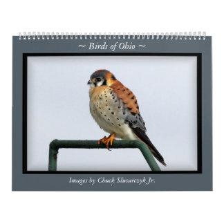 Birds of Ohio Wall Calendar