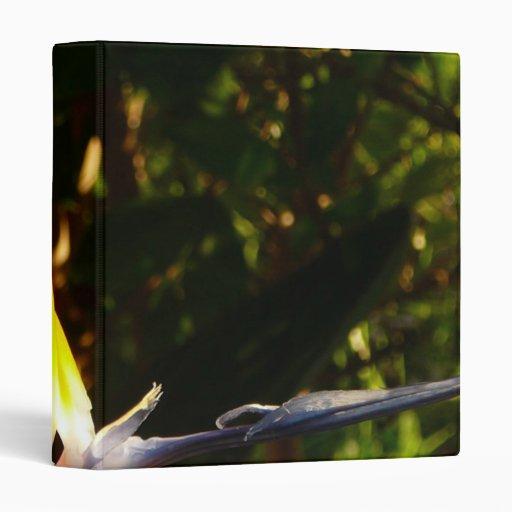 birds of paradis mf 3 ring binder