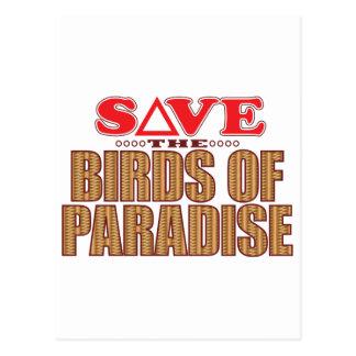 Birds Of Paradise Save Postcard