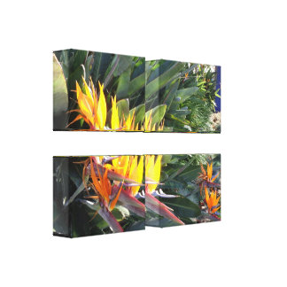 Birds of Paradise Stretched Canvas Print