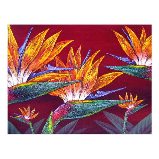 Birds Of Paradise Tropical Flower - Multi Postcard