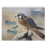 Birds of Prey 2010 Calendar