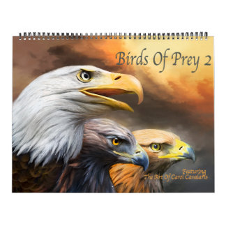 Birds Of Prey 2 Art Calendar