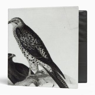 Birds of Prey Binder