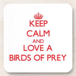 Birds Of Prey Coaster