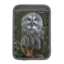 Birds of prey Great grey owl photograph case