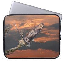 Birds of prey owl photograph at sunset case