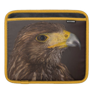 Birds of prey photograph hawk case sleeves for iPads