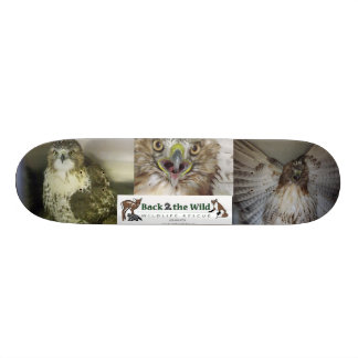 Birds of Prey Skateboard