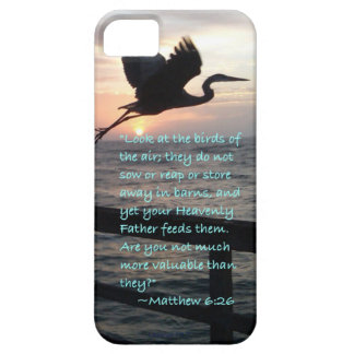 """""""Birds of the air"""" iPhone SE/5/5s Case"""