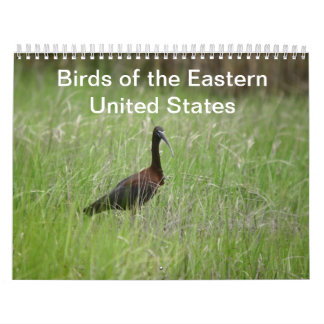 Birds of the Eastern United States calendar