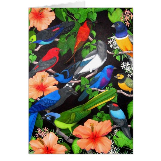 Birds of the Yucatan Peninsula Card