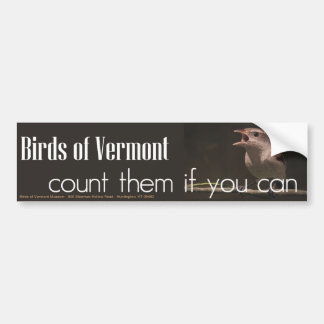 Birds of Vermont Museum Bumper Sticker