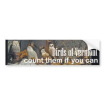 Birds of Vermont Museum Bumper Sticker: Winter Bumper Sticker