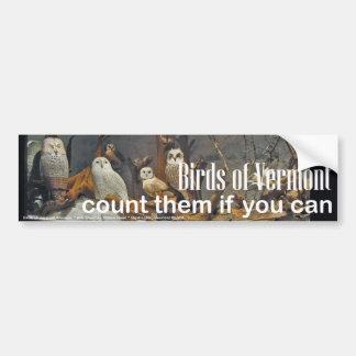 Birds of Vermont Museum Bumper Sticker: Winter Bumper Sticker