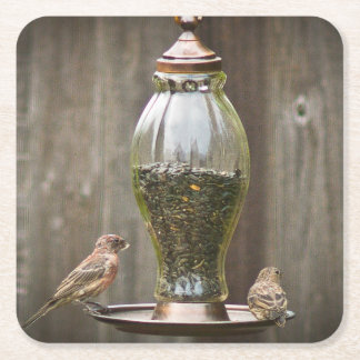 Birds on a Bird Feeder Square Paper Coaster