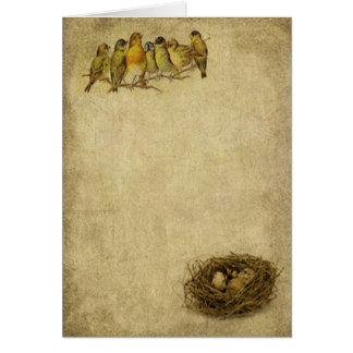 Birds On A Branch- Prim Lil Note Cards