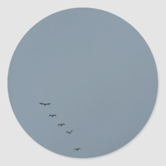 Birds on a Dreary Day Classic Round Sticker
