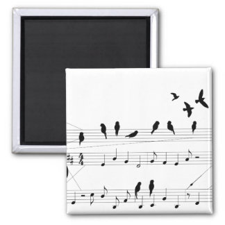 Birds on a Score magnet