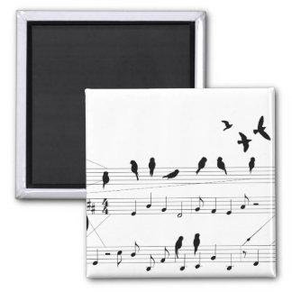 Birds on a Score magnet
