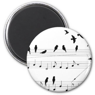 Birds on a Score Magnets