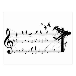 Birds on a Score postcard