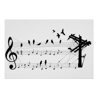 Birds on a Score poster
